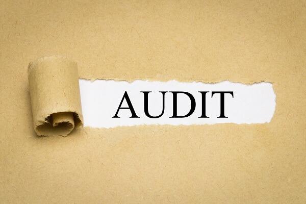 ZPIC Audit